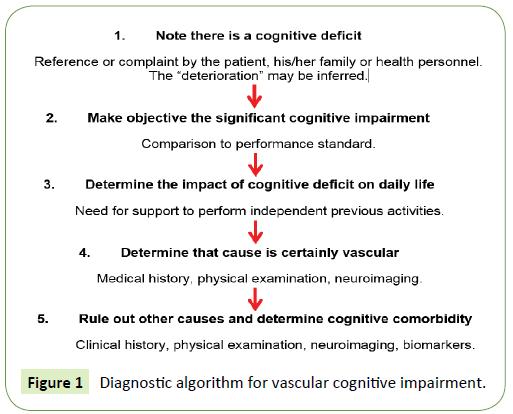 Neurology-Neuroscien-Diagnostic-algorithm